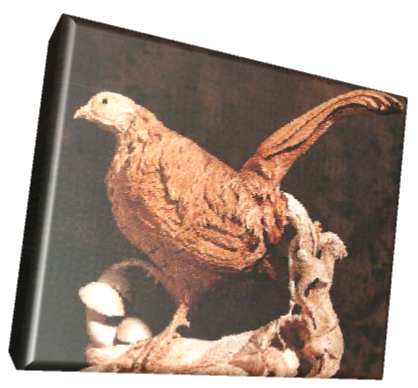 Cock Pheasant carving by Colin Hickman